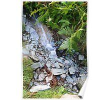 Running water Lake District  Poster