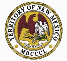 New Mexico State Seal by GreatSeal