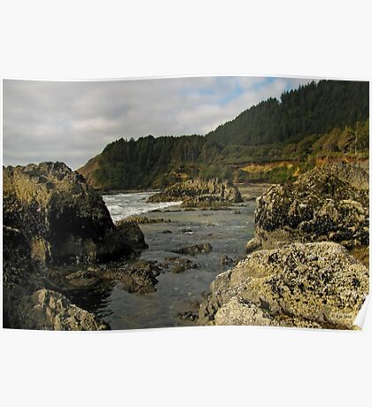 Rugged Coast Poster