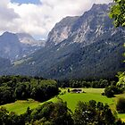 Reiter Alm (or Alp). Germany. by Daidalos
