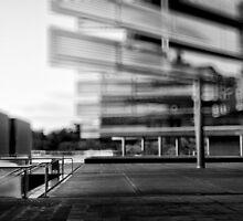 Quittez l'aile gauche de l'irréalité by Peter Denniston