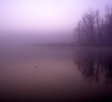 misty pond by irishgirl7