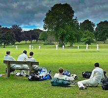 Village Cricket by TheWalkerTouch