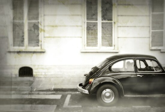 Beetle by Laurent Hunziker