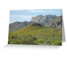 Spring at the Foot of Superstition Mountain Greeting Card