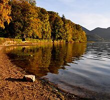 Lake Shore by Daidalos