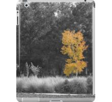 Tree at Sholom Park iPad Case/Skin