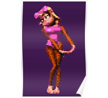 Donkey Kong Country - Candy Kong Poster
