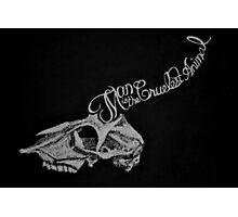 Cruelest Skull Photographic Print
