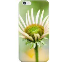 Green Echinacea 2 iPhone Case/Skin