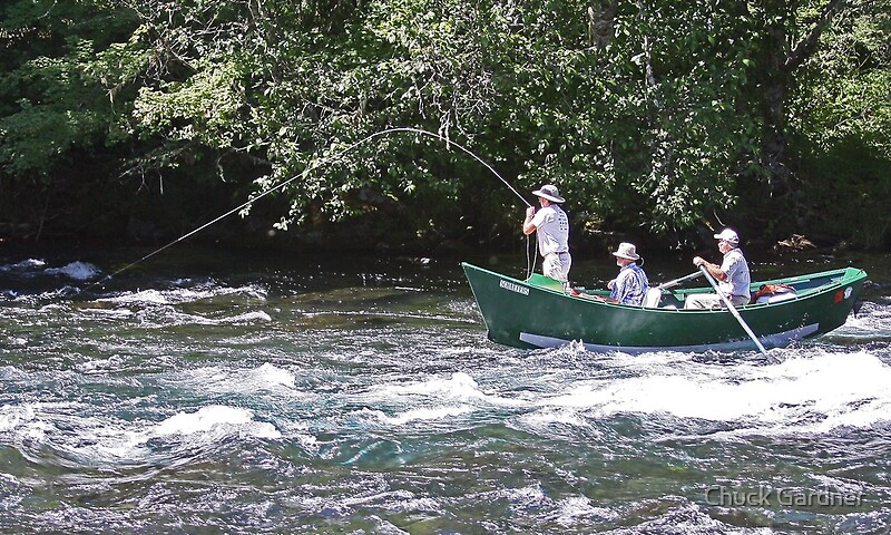 Fish on fly fishing on the mckenzie river by chuck for Mckenzie river fishing