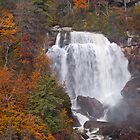 Whitewater Falls by Rick Montgomery
