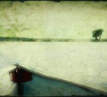 On the Zambezi by Brad Levine