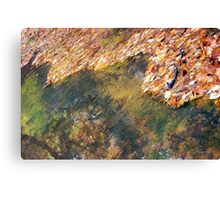 Monet's Mirror Canvas Print