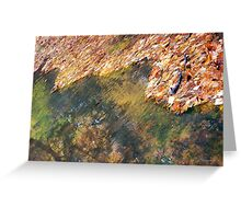 Monet's Mirror Greeting Card