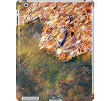 Monet's Mirror iPad Case/Skin