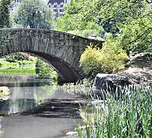 Gapstow Bridge by joan warburton