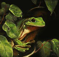 Green tree frog (Litoria caerulea) by TallabeenaArt