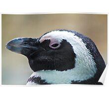Penguin Get My Good Side Poster
