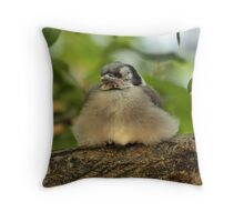 Jay Ball Throw Pillow