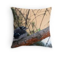 Jay waiting Throw Pillow