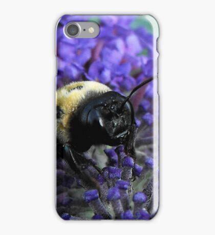 Late Summer Reverie iPhone Case/Skin