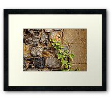 Flint and ivy Framed Print