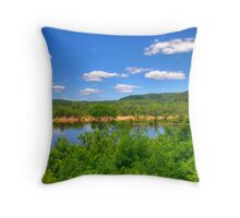 Wisconsin River  Throw Pillow