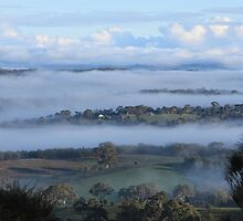 Foggy Morning on Mt Barker Summit #2 by Barb Leopold