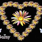 Daisy Heart by saleire