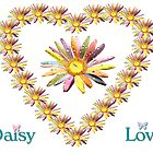 Daisy Love by saleire