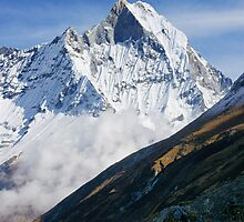 Majestic Machapuchhare  by Harry Oldmeadow