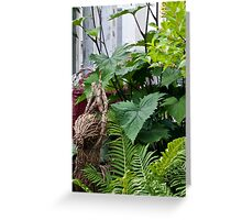 Large Leaf Ligularia And Ferns  Greeting Card