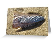 Silver Shell on Beach Greeting Card