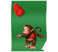 Donkey Kong Country  - Wink Poster