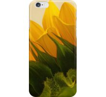 Sunshine Under The Petals  iPhone Case/Skin