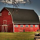 Old Red on the Prairies by Larry Trupp