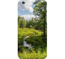 Swampy Creek iPhone Case/Skin