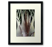 How It Grows Framed Print