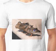 Basking in the Sun Unisex T-Shirt