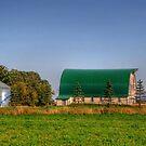 Ye Old Green Barn by Larry Trupp