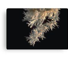 Cave crystal stalactite, Thailand Canvas Print