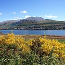 Fort William and Ben Nevis. by John Cameron