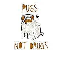 Pugs Not Drugs Photographic Print