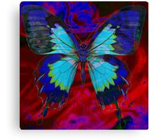 Psychedelia Illusions Take the Form of Butterflies Canvas Print