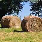 Round Hay Bales by mltrue