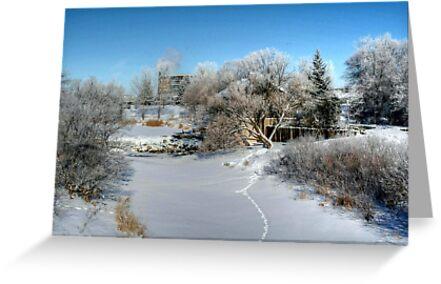Winter's Wonderland by Larry Trupp