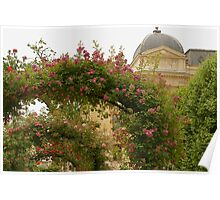 Jardin de Plantes Poster