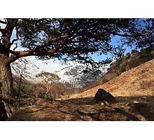 April in Glen Nevis. Photographic Print