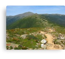 Summit of Mt. Pierce Canvas Print
